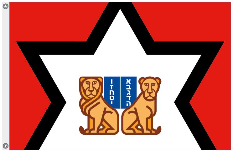 EEIF_2017_drapeau